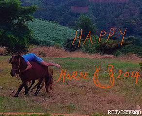 Happy New Year of the Horse!